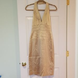 Gold Adrianna Papell Dress